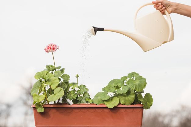 manos-plantando_23-2148128691