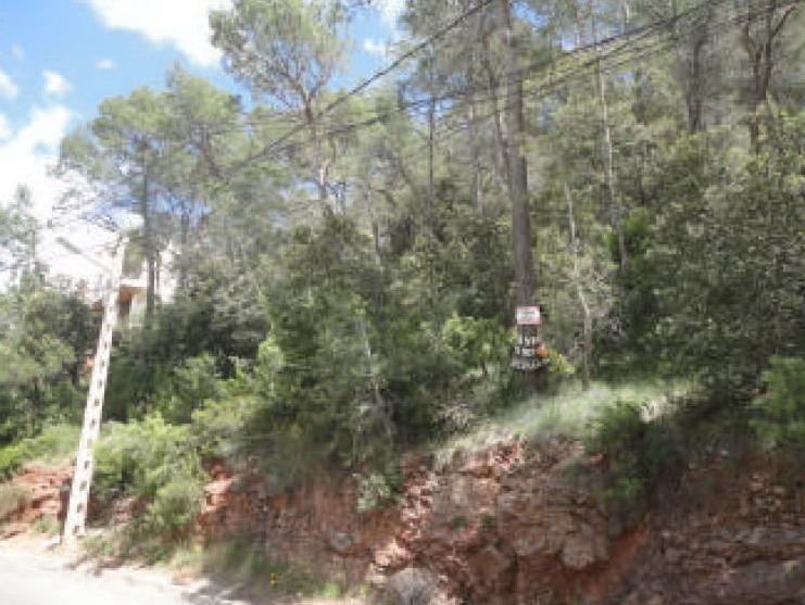 116362 - Solar en venta en Castellar del Vallés
