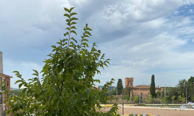 Imagen 1 Inmueble 241550 - Piso en venta en Sabadell / A 5 min. de Ferrocarrils Generalitat de Gràcia