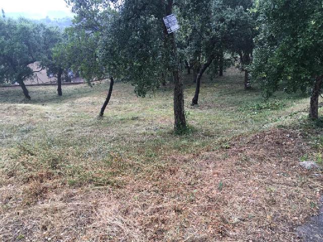 Imagen 1 Inmueble 241304 - Solar Rústico en venta en Bescanó / Terreny amb vistes a l´Urbanitzacio Mas Llunes