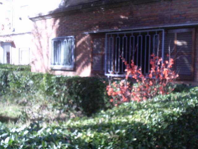 Imagen 1 Inmueble 242309 - Planta Baja en alquiler en Girona / Pis planta baixa al costat del Geieg de Sant Narcis