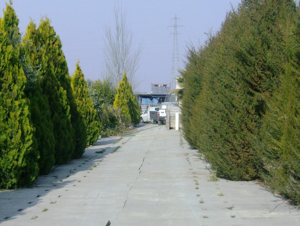 113089 - Camino del Instituto