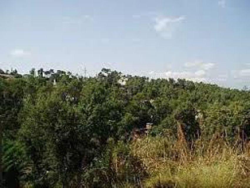 152938 - Zona: La Floresta