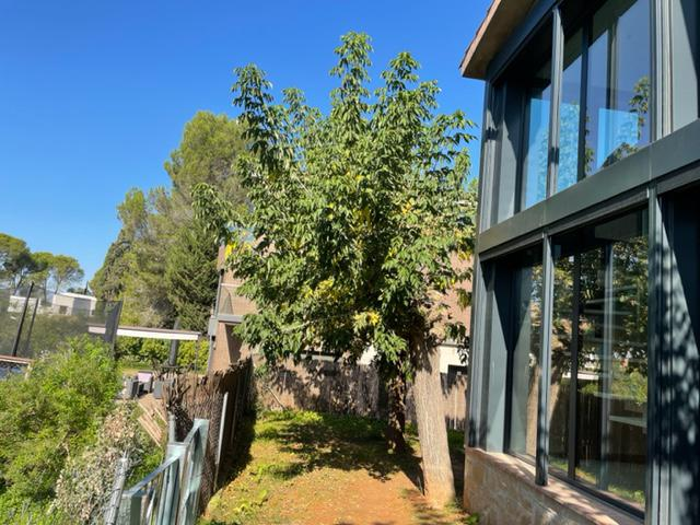 Imagen 4 Casa Pareada en alquiler en Sant Cugat Del Vallès / Condis y peluquería
