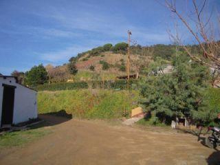 Imagen 1 Inmueble 21925 - Solar Rústico en venta en Calella / Riera Capaspre, zona agricola