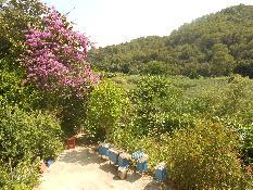 228447 - Casa Rústica en venta en Santa Susanna / Finca rustica al lado del pueblo