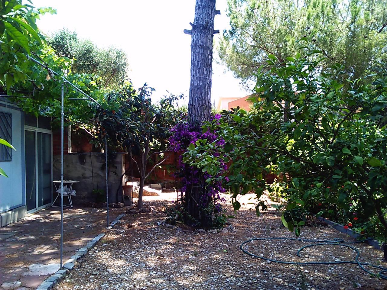 161808 - Cerca restaurante Els 4 Vents Crta de Martorell