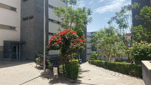 Imagen 1 Inmueble 252021 - Piso en venta en Palmas De Gran Canaria (Las) / A dos pasos del centro comercial Los Alisios