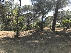 184383 - Solar Urbano en venta en Vilanova Del Vallès / Situado en Ca L´Alegre.