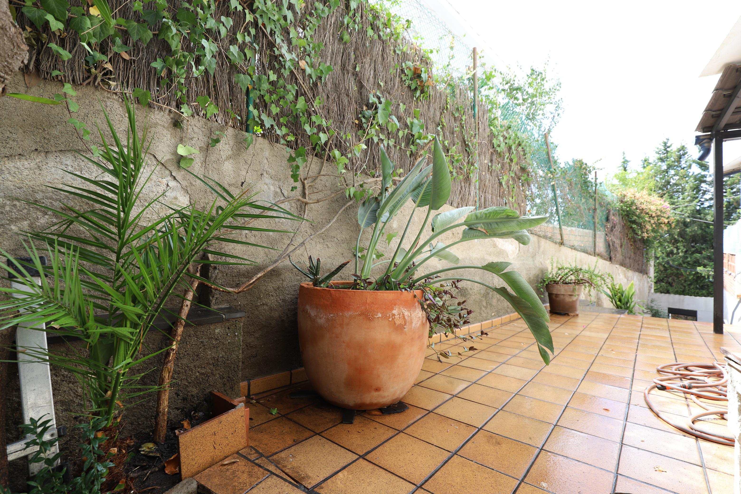 Imagen 3 Planta Baja en alquiler en Esplugues De Llobregat / Cerca del colegio Americano