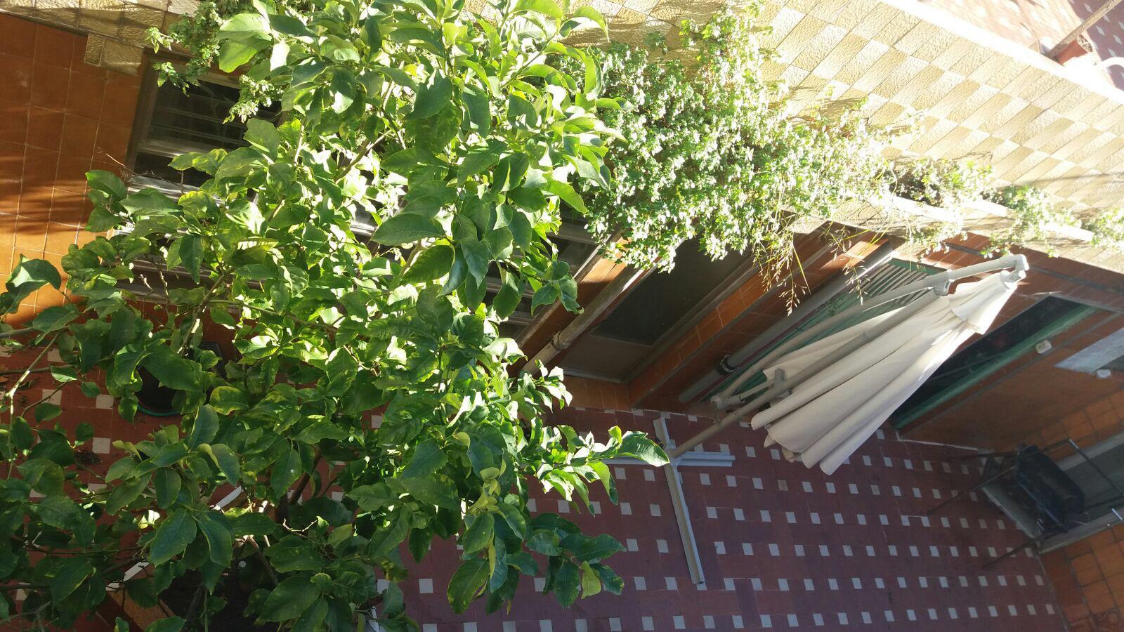 Imagen 3 Casa en venta en Badalona / A cinco minutos de la B-20