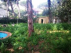 205834 - Casa Aislada en venta en Alcalá De Guadaíra / Alcalá de Guadaira. Pinares de Oromana