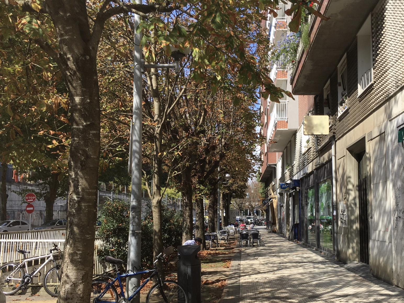 Imagen 3 Local Comercial en venta en San Sebastián / A 500m del centro, primera zona de Amara, Donostia