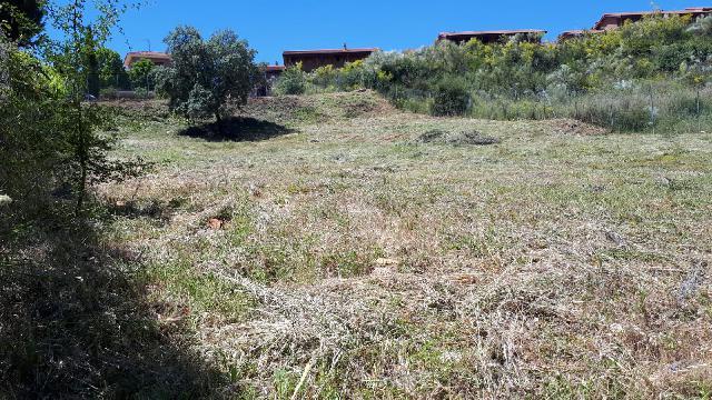 Imagen 1 Inmueble 243091 - Solar Urbano en venta en Cabanillas Del Campo / Cabanillas Golf
