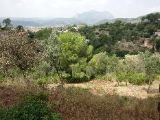210841 - Solar Urbano en venta en Olesa De Montserrat / Ribes Blaves - Camí Llumasos