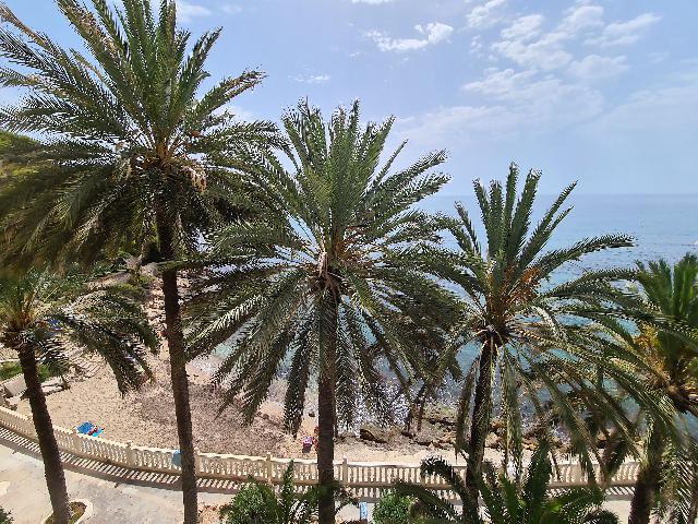 Imagen 1 Inmueble 241640 - Apto. Playa en venta en Alicante/alacant / Enfrente del mar. Playa de la albufereta