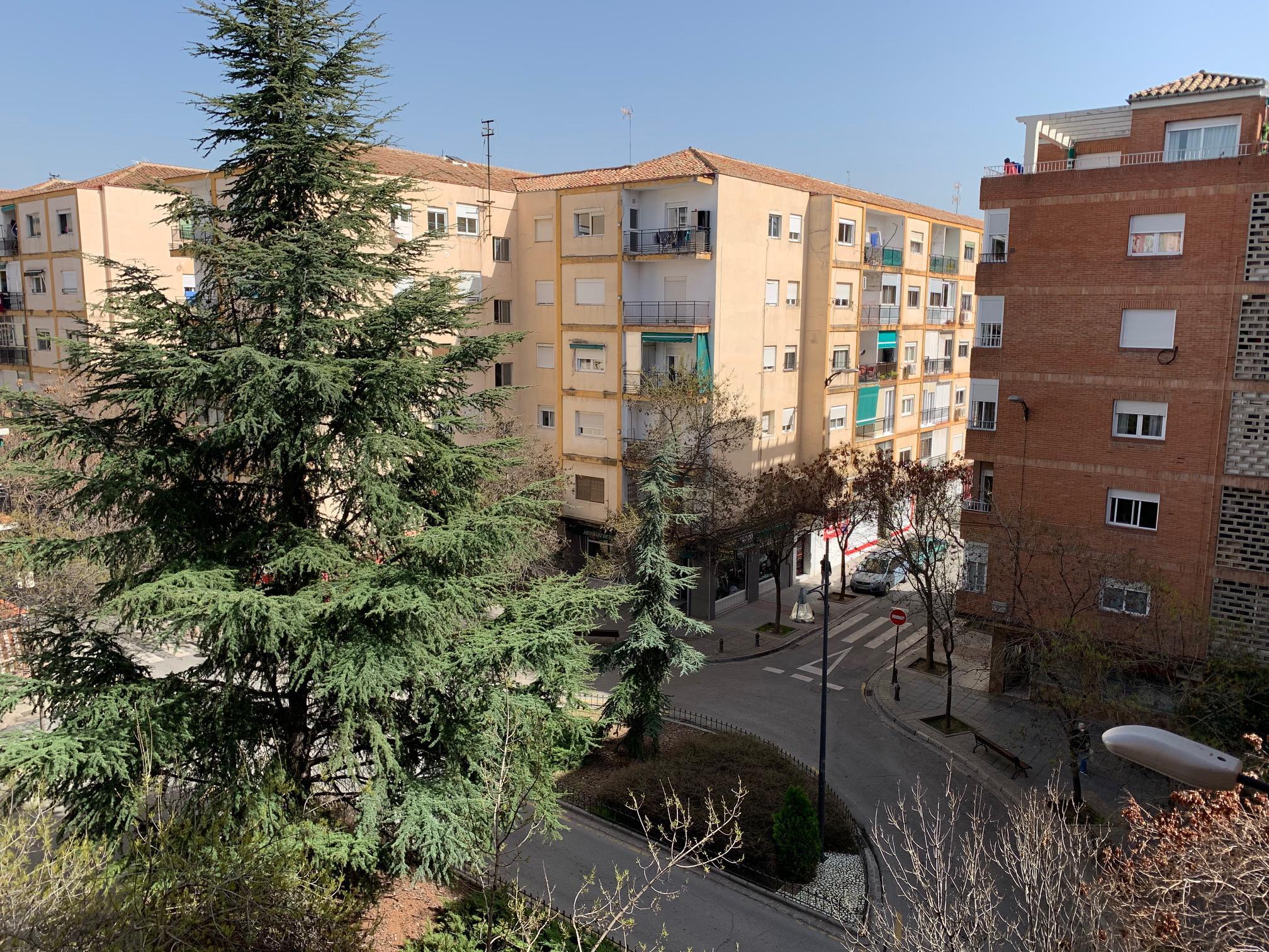 Imagen 1 Piso en venta en Granada / En zona plaza de toros