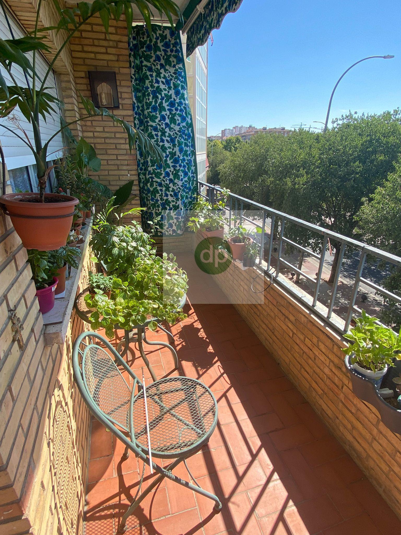 Imagen 1 Piso en venta en Badajoz / San Roque - La Picuriña. En plena avenida.