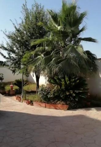 Imagen 1 Inmueble 253485 - Casa Rústica en venta en Córdoba / Cj Fontanar de Quintos, Urbanización la Perla 2.