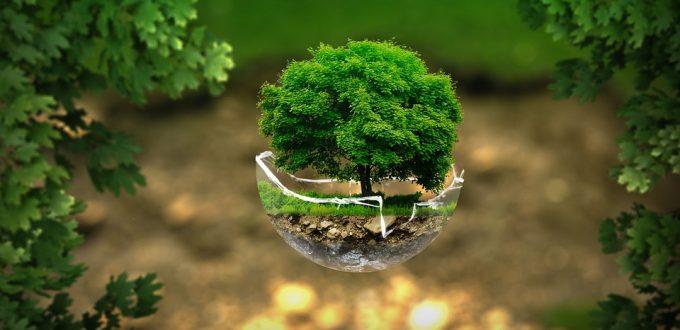 environment-2196690_960_720